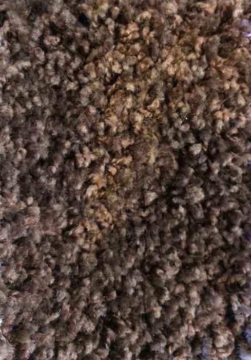 Karpet Sensation Bruin
