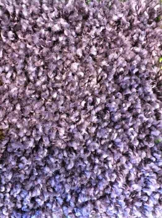 Karpet Sensation Paars
